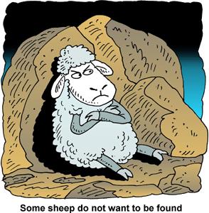Sommige schapen willen niet gered worden